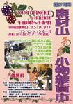 #11 小物雑貨市ポスター.jpg