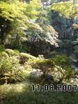殿ケ谷戸庭園071108_1234~01.jpg